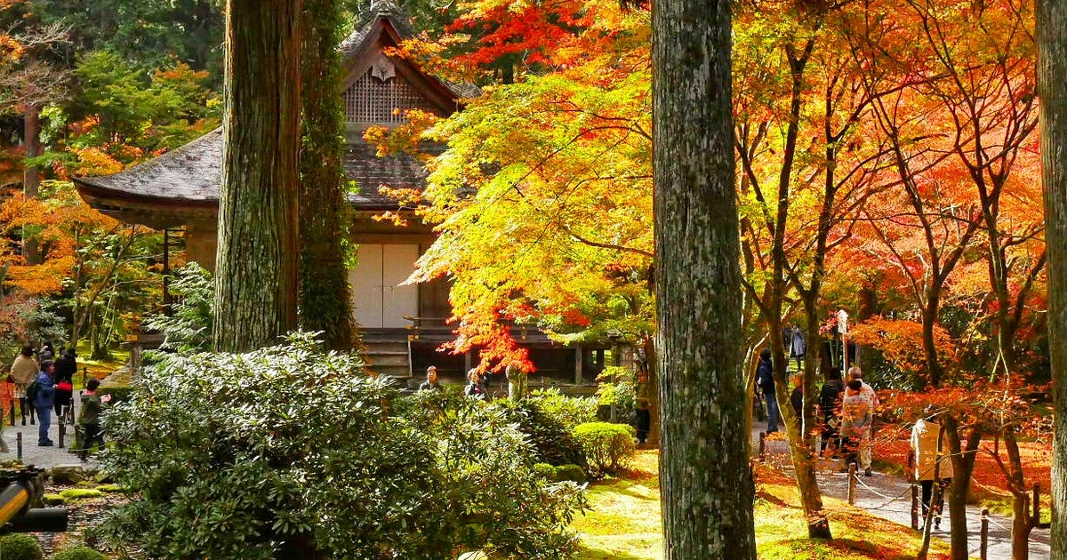Sanzen-in temple in Ohara Kyoto. Autumn leaves Kyoto Japan guide Nov 2018